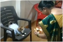 Watch: This Cat Lover Dresses Up Her Pet Feline and Performs 'Aarti' on It