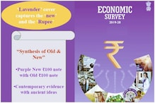 'Synthesis of Old and New': Economic Survey 2020 Painted Lavender Like New Rs 100 Note