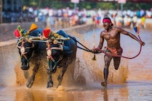 Usain Bolt Running On Track And Me Running in Fields Can't Be Compared: Kambala Jockey Srinivasa Gowda
