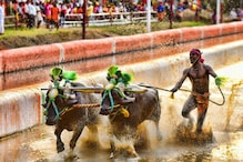 Kambala Jockey Srinivas Gowda May Wear Spikes at Sports Authority of India Centre