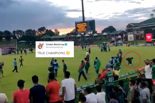 Screenshot from video tweeted by Cricket World Cup / @cricketworldcup.
