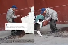 In a Heartfelt Act, Old Man Takes Multiple Trips to Feed Thirsty Dog Water With Bare Hands