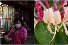 Liquid Honeysuckle: Chinese Flock to Dubious Herbal Remedies to Prevent Coronavirus