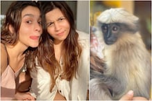 When Alia Bhatt Celebrated Her Birthday with Sisters Shaheen, Pooja and a Langur Monkey