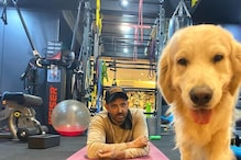 Hrithik Roshan's Adorable Dog Zane Has Perfect Message For Everyone; See Here