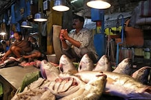 As Circuses Remain Shut Due to Covid-19, Kolkata Performer Forced to Sell Fish to Survive