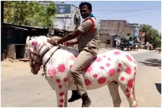 A sun-inspector from Kurnool, AP, painted a horse with coronavirus images to spread awareness | Image credit: Twitter/ANI