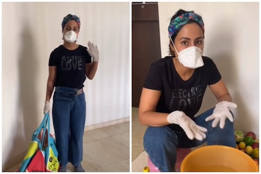 Hina Khan Shows How to Not Carry Coronavirus Into Your Homes After Grocery Shopping, Watch Video