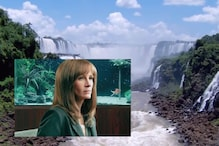 'Nature Will Go On': Old Video of Julia Roberts' Narration is Going Viral in Coronavirus Lockdown