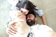 Virat & Anushka Cuddle Up With Their Furry Friend; See Picture