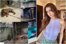 Shraddha Kapoor Uses Covid-19 Lockdown to Draw Attention to Animals Suffering in Captivity