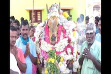 Madurai Villagers Gather in Hundreds, Flout Lockdown Rules for Beloved Bull Mooli's Final Journey