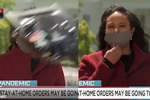 Falling Light Stands and Strong Wind, But this Reporter on Live TV was Unstoppable