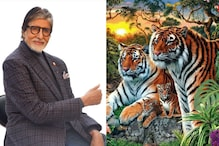 Can You Find Hidden Tigers In This Image? B-Town Celebs Join the Bandwagon