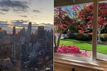 People Across the World are Sharing 'View From My Window' as They Stay Indoor During Lockdown
