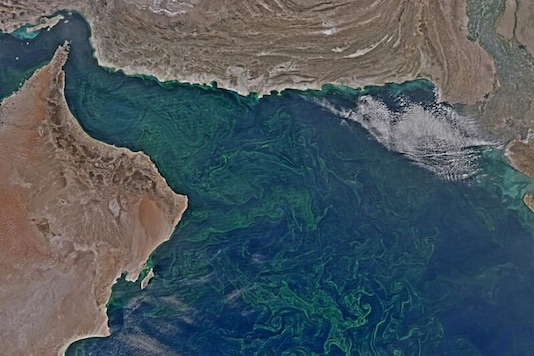 Toxic Algae in Oceans Triggered by Melting Snowcaps in Himalayas are Visible from Space