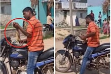 Karnataka Man Returning from Liquor Store Bites Snake into Pieces for Crossing His Path