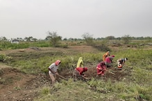 Demand for MGNREGA Work Sees Steep Rise in 116 Districts with Return of Migrants