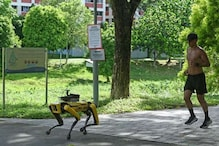 Robot Dog Patrols Parks in Singapore to Ensure Social Distancing amid Covid-19 Lockdown