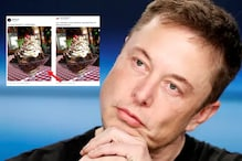 Elon Musk Stole a Picture of Sundae Just to Prove He Broke Lockdown and Dined Out