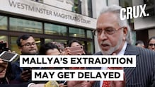 Vijay Mallya May Not Be Extradited In A Month