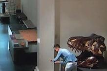 Man Breaks into Closed Sydney Museum, Clicks Selfies with Dinosaur Skulls