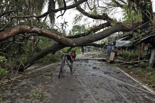 A man walks with his bicycle under an uprooted tree after Cyclone Amphan made its landfall in South 24 Parganas district in West Bengal on Thursday. (Reuters)