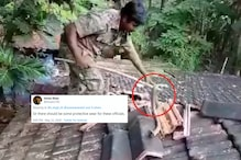Caught on Tape: Goa Forest Official Rescuing Cobra With Bare Hands Sparks Debate Online