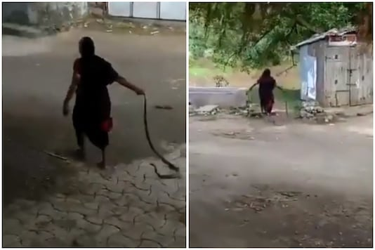The video of old pulling a snake by its tail is going viral | Image credit: Twitter
