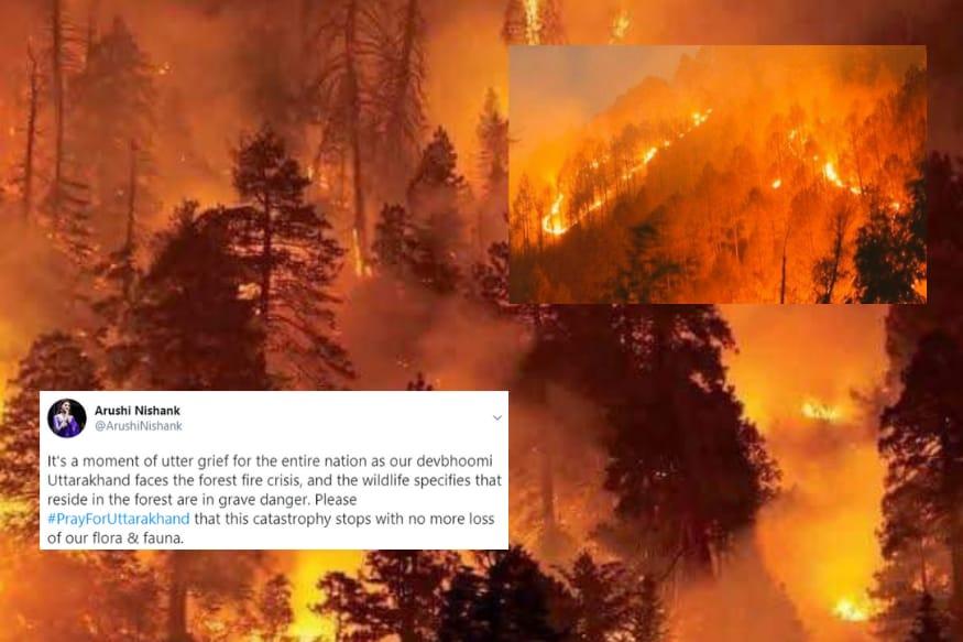 Devastating Visuals Show Uttarakhand Burning in Forest Fire, #PrayForUttarakhand Trends on Twitter