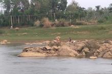 River, Forest & Hills: Kerala Tipplers Cross All Hurdles to Enter Karnataka for a Bottle of Liquor
