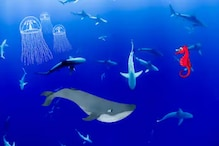 Global Warming is So Bad, it Won't Even Spare the Deepest Ocean Creatures