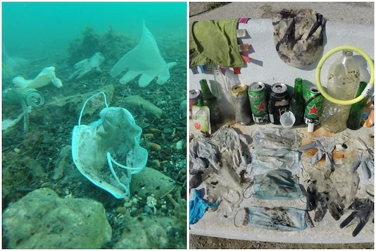 Surgical masks and latex gloves found floating in Mediterranean ocean-bed | Image credit: Facebook