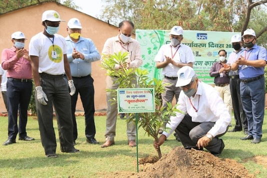 A herbal park was also inaugurated by NHPC Chairman and Managing Director A K Singh at the NHPC Complex on June 5, 2020. (Image: NHPC Limited @nhpcltd)