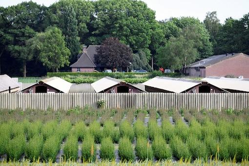 FILE PHOTO: A mink farm is seen during the coronavirus disease (COVID-19) outbreak in Oploo, Netherlands June 3, 2020. REUTERS/Piroschka van de Wouw/File Photo
