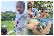 Ziva Narrates How Papa MS Dhoni Rescued a Crimson-breasted Barbet