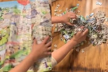 Watch: This Perfectly-fit Puzzle Getting Destroyed has 'Crushed' and 'Hurt' Netizens
