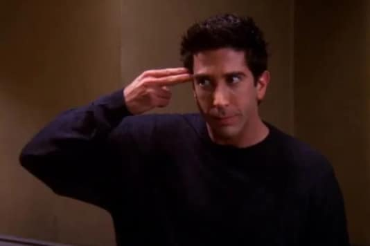 David Schwimmer as Ross Geller on Friends