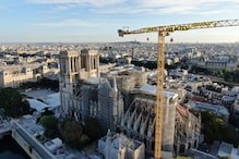 'Time to Act': Climate Activists Protest with Banners from Notre Dame Cathedral Crane