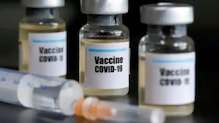 New Vaccine Candidate Induces Immune Response in Mice, Primates, Says Study