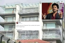 Shah Rukh Khan's Bungalow Mannat Covered in Plastic Sheets, And it's Not for Coronavirus