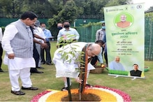 Must Learn From Indian Culture And Support Nature, Greenery Only Solution For Climate Change: Amit Shah