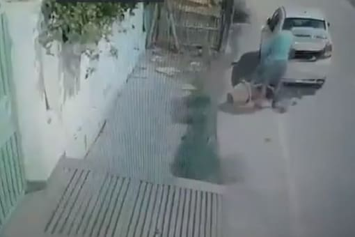 Lucknow man stealing a plant caught in camera. Credits: Twitter