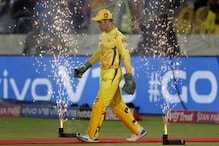 MS Dhoni's Instincts the Reason for CSK's Success, Feel Rahul Dravid and N Srinivasan