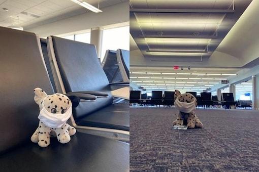 (Image credit: Facebook/ Cincinnati/Northern Kentucky International Airport)