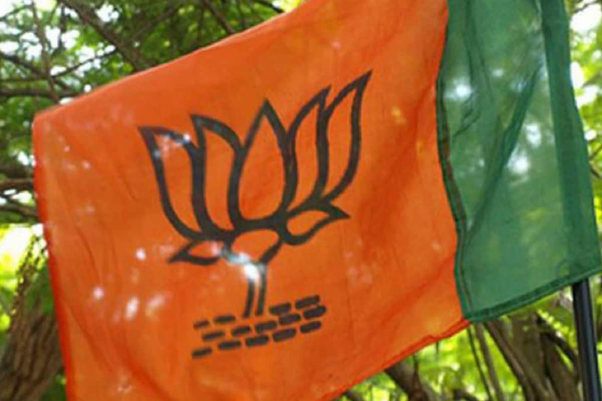 Will Bring in Law to Prevent 'Love Jihad' in Kerala if Voted to Power: BJP