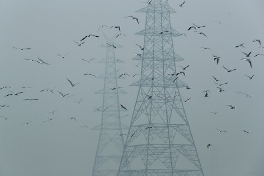 Birds fly next to electricity pylons on a smoggy afternoon in the old quarters of Delhi, India, October 30, 2019. (REUTERS/File)