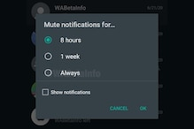 WhatsApp Group Mute Forever Option Coming Soon: This Could be the Respite You Wanted