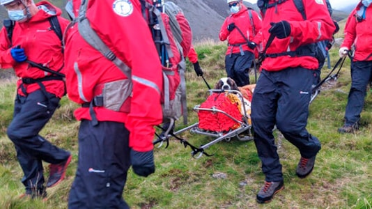 Mountain rescuers heft ailing St. Bernard off English peak