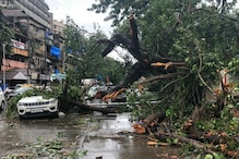 Mumbai Rains: Heavy Showers, Flood & Strong Winds Leave Trail of Destruction